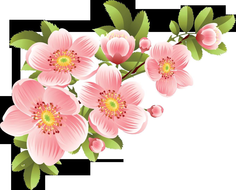 に 名 花 も を 名前 しょう は ない 付け ま